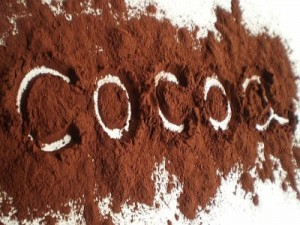 cacaopoeder-01